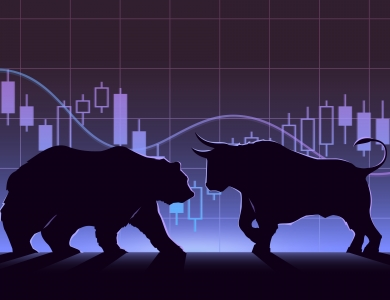 bull and bear market
